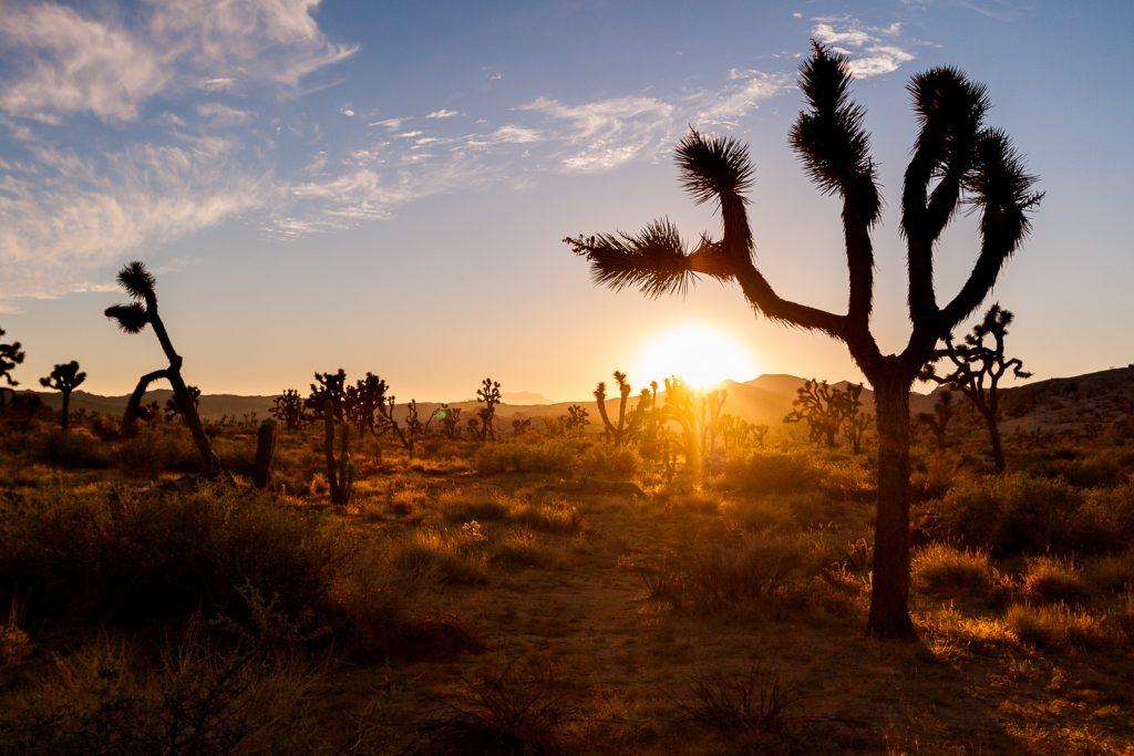USA Westen Fotografieren