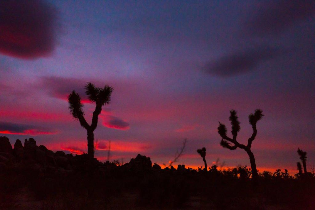 Dämmerung Wüste fotografieren
