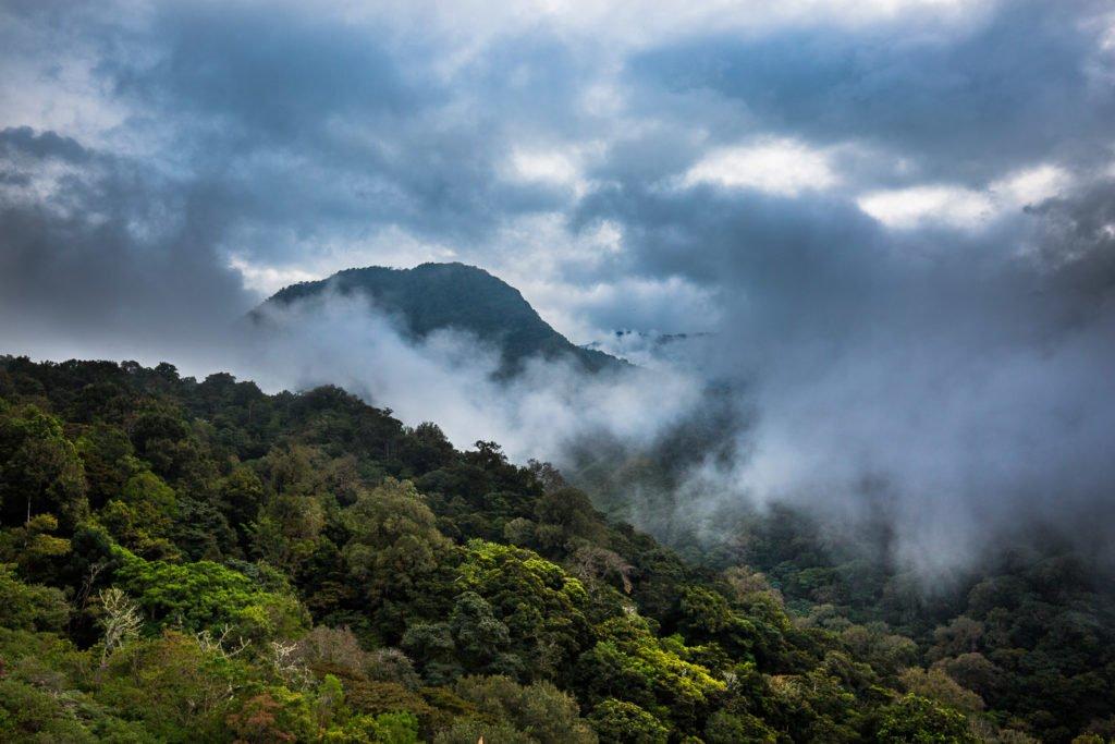 Wolken über dem Dschungel fotografiert
