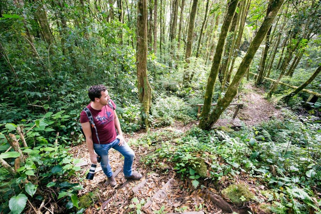Fotograf im Dschungel