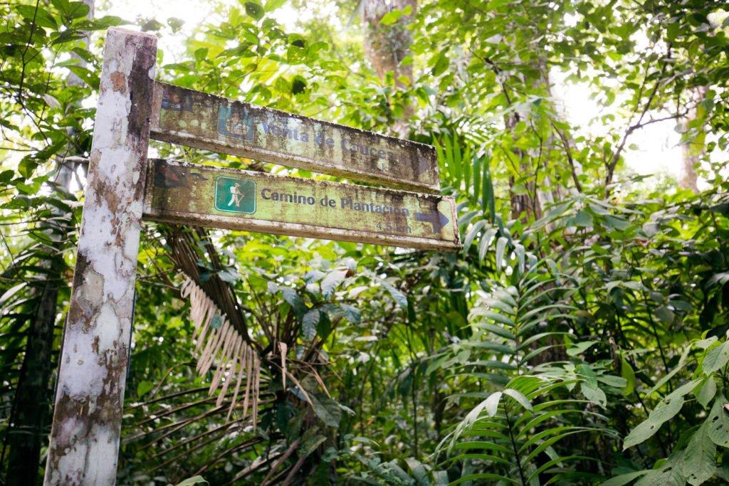 Verwitterte Wegweiser im Soberania Nationalpark