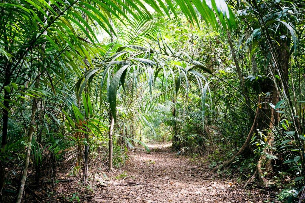 Las Cruzes Trail ist nicht mehr begehbar