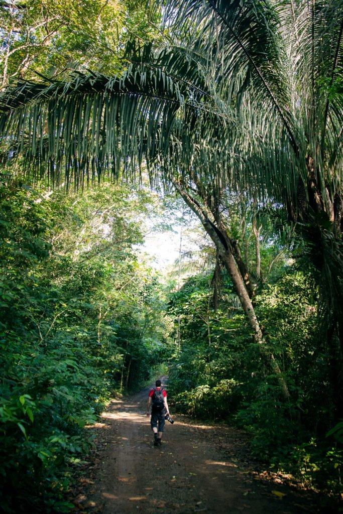 Fotograf läuft durch den Dschungel