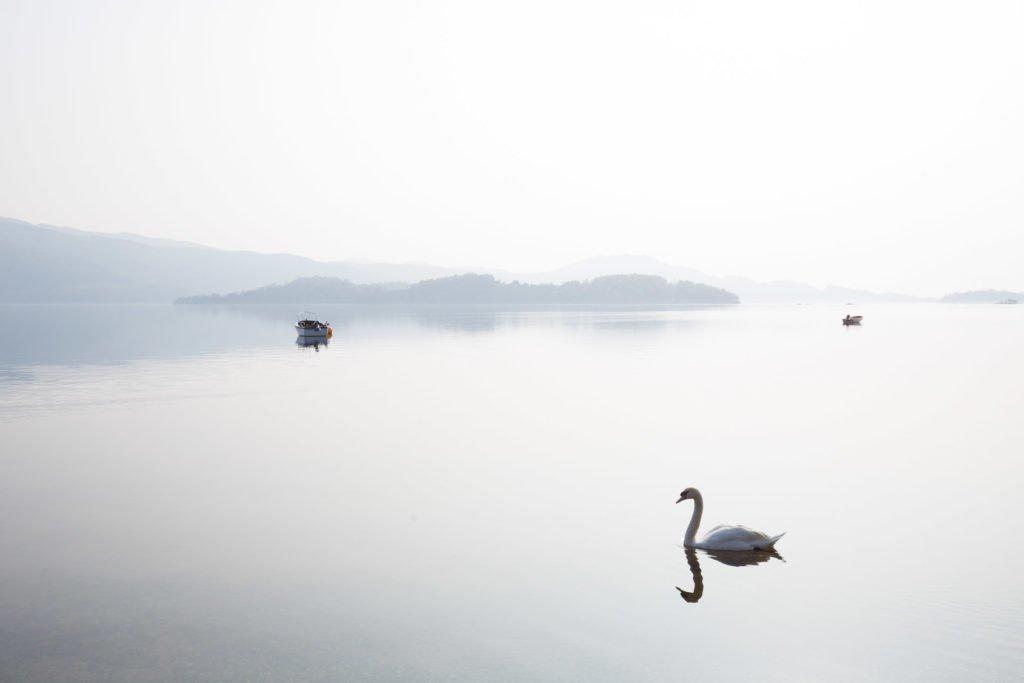 Gute Fotos Nebel