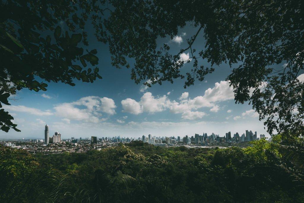 Blick vom Dschungel aus auf Panama City